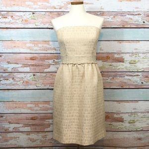 🎉HP🎉NEW Talbots Champagne Shimmer Cocktail Dress